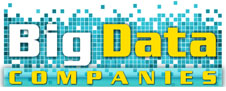 Big Data Companies logo